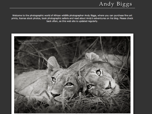 copyright Andy Biggs